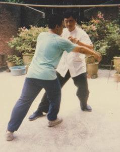 Koh Shifu and Wu Shifu push hands Secrets of Cheng's Taiji